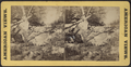 Man sitting atop a fallen tree trunk, from Robert N. Dennis collection of stereoscopic views.png