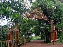 Mangroves park pappinisseri1.JPG
