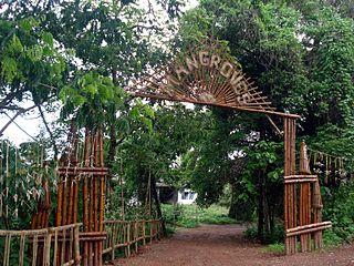 Pappinisseri Town in Kerala, India