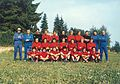 Mantova Football Club.jpg
