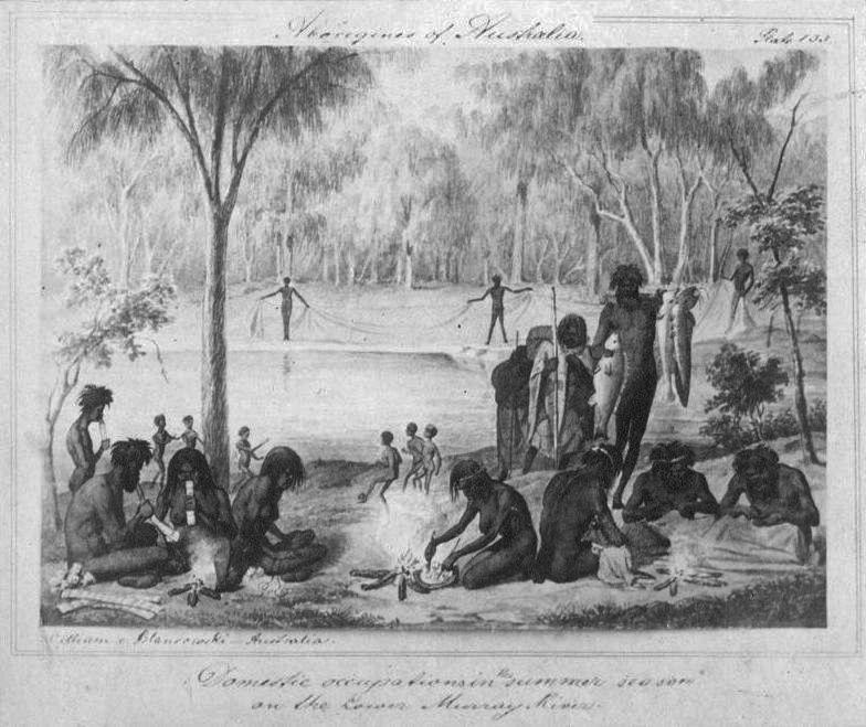Marn grook illustration 1857