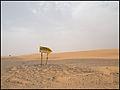 Marruecos - Morocco 2008 (2864128753).jpg