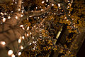 Marunouchi light decorated trees -4 (8247702289).jpg