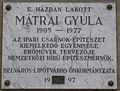 MatraiGyula Varoshaz3-5.jpg