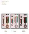 Medal of Honor of the Military Medals of the State of Palestine.png