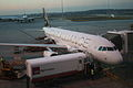 Melbourne Airport Star Alliance Aircraft.jpg