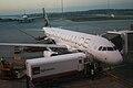 Melbourne Airport Star Alliance Aircraft.jpg