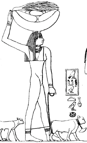 "Personified Hwt domain of Menkauhor called ""Menkauhor is perfect of appearances"", tomb of Ptahhotep. Menkauhor Estate.png"