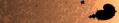 Mercator Mandelbrot (3382734426).png