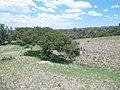 Minas de El Vergel - panoramio (1).jpg