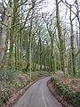 Minor road, south of Blackborough - geograph.org.uk - 1774485.jpg
