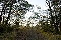 Mittagong NSW 2575, Australia - panoramio (4).jpg