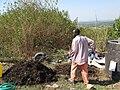Mixing the compost heap manually (6881962787).jpg