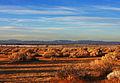 Mojave Desert National Preserve (4040289834).jpg