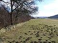 Molehill Country - geograph.org.uk - 140468.jpg