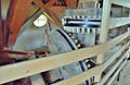 Molen de Olifant, Burdaard, aandrijving uitmaalvijzel (10).jpg