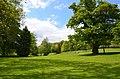 Monceau-sur-Sambre - parc - 2019-05-12 - 19.jpg
