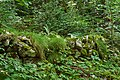 Montsegur arqueologia 2.jpg