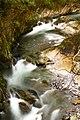 Morbio Inferiore River.jpg