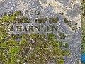 Moss growing in gravestone lettering, Brompton Cemetery, London.jpg