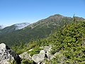 Mt. Adams from AT on Mt. Madison - panoramio.jpg