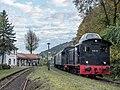 Muggendorf-Bahnhof-DFS-PA230128.jpg