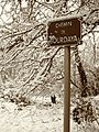 Muret - Chemin de Bourdaya - 20150203 (1).jpg