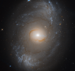 NGC 4151 - HST.png