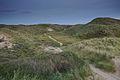 Nationaal Park Zuid-Kennemerland (15).jpg