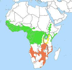 En verde el área de esta especie.