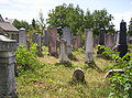 New Jewish cemetery in Pápa 03.jpg