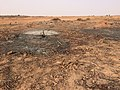 Niger, Dantchandou, cleared tiger bush.jpg