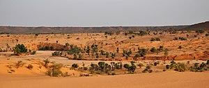 Нигер, Ниамей, Дюны (19), Panorama.jpg