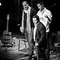 Nitcho Reinhardt Trio (234035).jpg