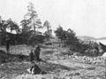 Nordvästra Kungsholmen 1870-tal.jpg