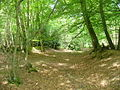 North Downs Way - geograph.org.uk - 1316912.jpg