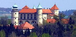 Zamek w Nowym Wi�niczu