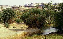 Niger-Idrografia-Oasis-Bilma