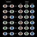 Offspring eye color.png
