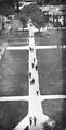 Olive Walk 1941.png