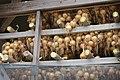 Onions hanging on drying racks in Fukudomi 02.jpg