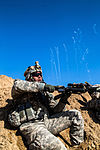 Operation Intrepid Centurion 140219-Z-AR422-029.jpg