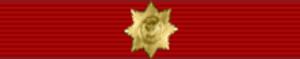 Vladimir Dolgikh - Image: Orden for Service I