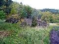Overgrown lime kiln at Loch an Eilein - geograph.org.uk - 1528573.jpg