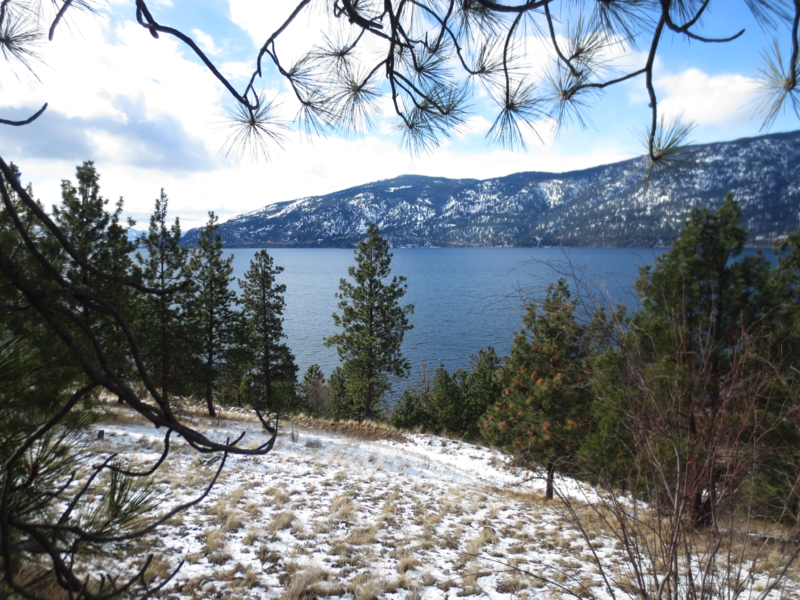 File:Overlooking the Lake by Okanagan Centre on a Late Winter Morning.png
