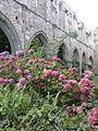Paimpol (22) Abbaye de Beauport Nef principale 04.JPG