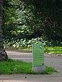Palmeres - arbre d'interès local - Jardins de Vil·la Amèlia P1280080.jpg