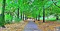 Parc Jean Vivès 2.jpg