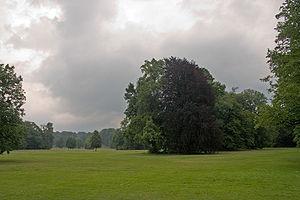 Łęknica - Image: Park Muzakowski 4