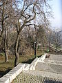 Park in Autumn - Cetatuia, Cluj Napoca, Romania.jpg
